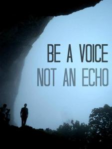 Voice Not An Echo