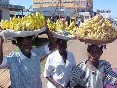 Kenya Girls with Bananas