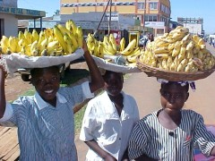Kenya Girls with Bananas