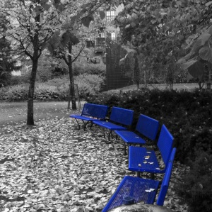Finland Park Bench