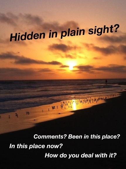 Ventura Hidden in Plain Sight