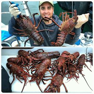 Ryan Lobster