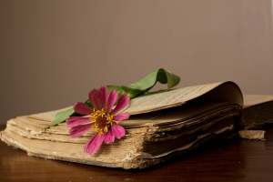 Old Book Flower