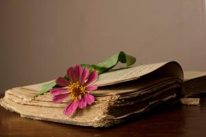 Old Book Flower
