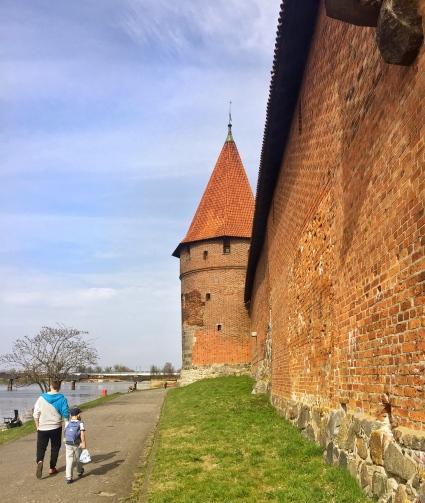 Malbork Castle 5