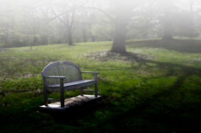 Park Bench - Meditate